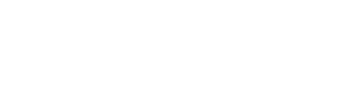Hibbett revisedlogo white